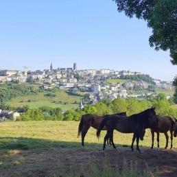 Camping Rodez Aveyron · 90 location de vacances rodez vue uai