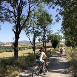 Camping Rodez Aveyron · img 8120 uai